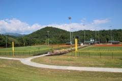 big-league-fields-maxwell-home-side